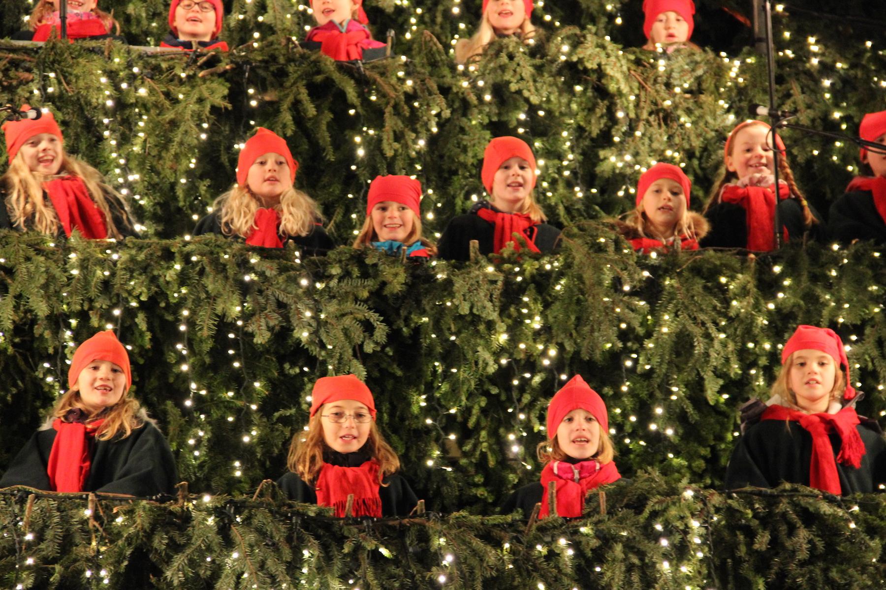 Christmas Tree Back.News Post